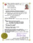 Certificate of Competence DSB Engineering Yelfril Almanzar